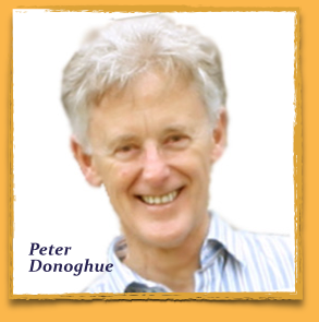 Peter Donoghue